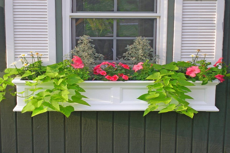 How To Choose The Best Window Planter Boxes For Your Home?